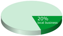google local business facts